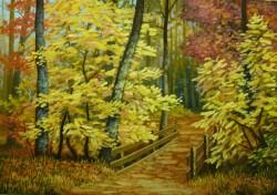 Picturi de toamna Podetul din padure