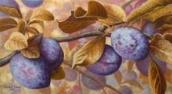 Picturi de toamna Prune
