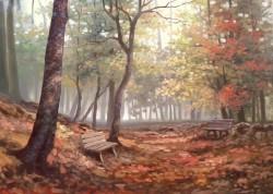 Picturi de toamna Toamna cetoasa in parc