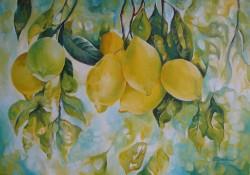 Picturi de toamna Lemons