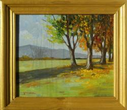Picturi de toamna peisaj toamna 11