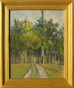 Picturi de toamna stejarii din marginea padurii