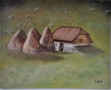 Picturi de toamna Sura si capitele