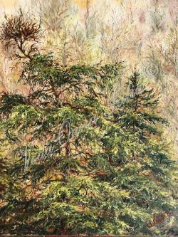 Picturi de toamna Pune trees