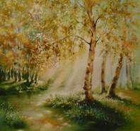 Picturi de toamna Raze de soare