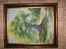 Picturi de toamna Copac secular