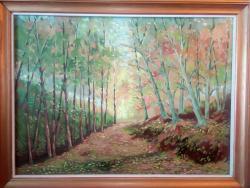 Picturi de toamna Padure Olanesti Toamna