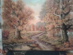 Picturi de toamna drum in padure