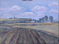 Picturi de vara Peisaj la Comana, Giurgiu
