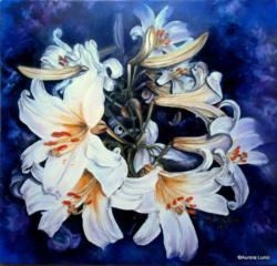 Picturi de vara Imperial Lily XV