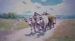 Picturi de vara Car cu boi 2