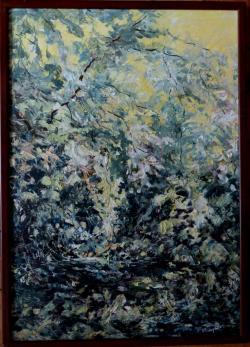 Picturi de vara Valea Cernei