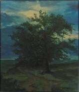 Picturi de vara Stejar