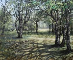 Picturi de vara crangul - 2016