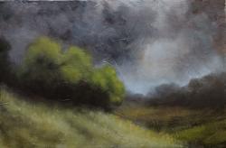 Picturi de vara furtuna 1