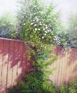Picturi de vara Gardul insorit