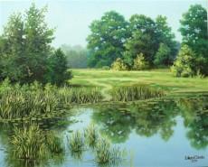 Picturi de vara Lac vara