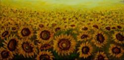 Picturi de vara Soare pe camp 1