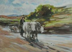 Picturi de vara car cu boi . 12