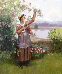 Picturi de vara culegatoarea de flori
