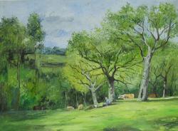Picturi de vara peisaj 41