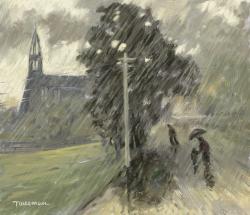 Picturi de vara ploaie in satul meu