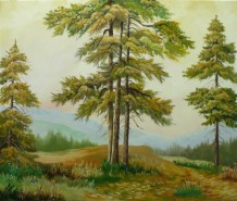 Picturi de vara Montana 1