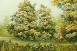 Picturi de vara Vara torida
