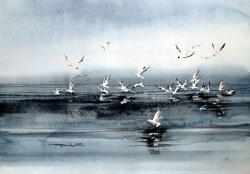 Picturi acuarela O seara linistita la malul marii alaturi de pescarusi