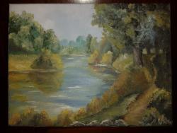 Picturi de vara Poienita langa lac