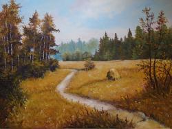 Picturi de vara Poienita satului ....