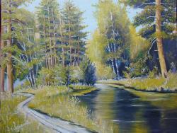 Picturi de vara Lacul din padurea verde