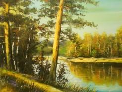 Picturi de vara Peisaj de vara-sunetul viorii