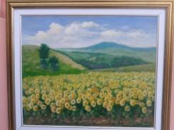 Picturi de vara Deal cu floarea soarelui
