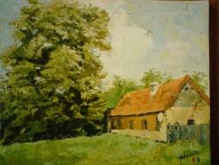 Picturi de vara Casa batraneasca