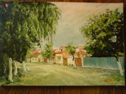 Picturi de vara Strada in lugoj