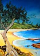 Picturi de vara Hawaii.beach