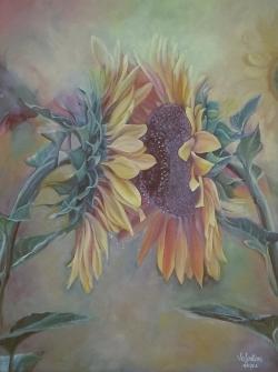 Picturi de vara floarea-soarelui