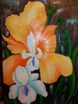 Picturi de vara Irisi in noapte