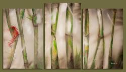 Picturi decor bamboo