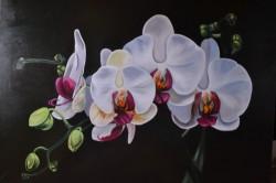 Picturi decor Orhidee