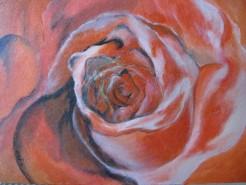 Picturi decor Rosa
