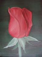 Picturi decor Boboc de trandafir