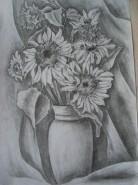 Picturi in creion / carbune Floarea soarelui