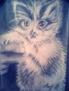 Picturi in creion / carbune Pisica