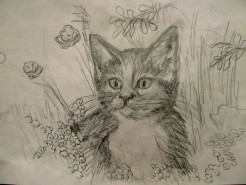 Picturi in creion / carbune Prin iarba
