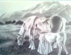 Picturi in creion / carbune Dragoste fara limite