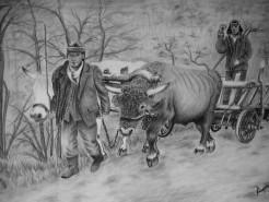 Picturi in creion / carbune Car cu boi