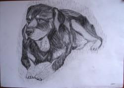 Picturi in creion / carbune B.