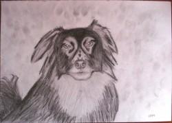 Picturi in creion / carbune M.